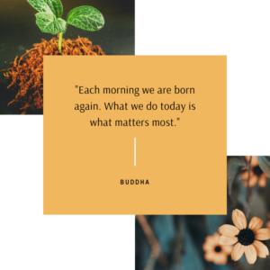buddha mindfulness quote